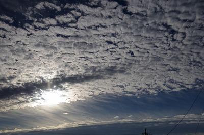 秋11月1日の朝s-IMGP8110