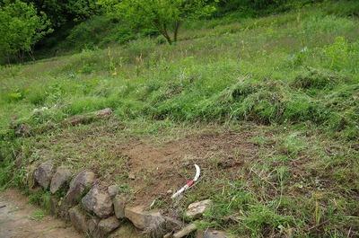 草刈り170606s-IMGP6092