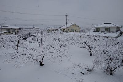 雪1802020732s-IMGP1704