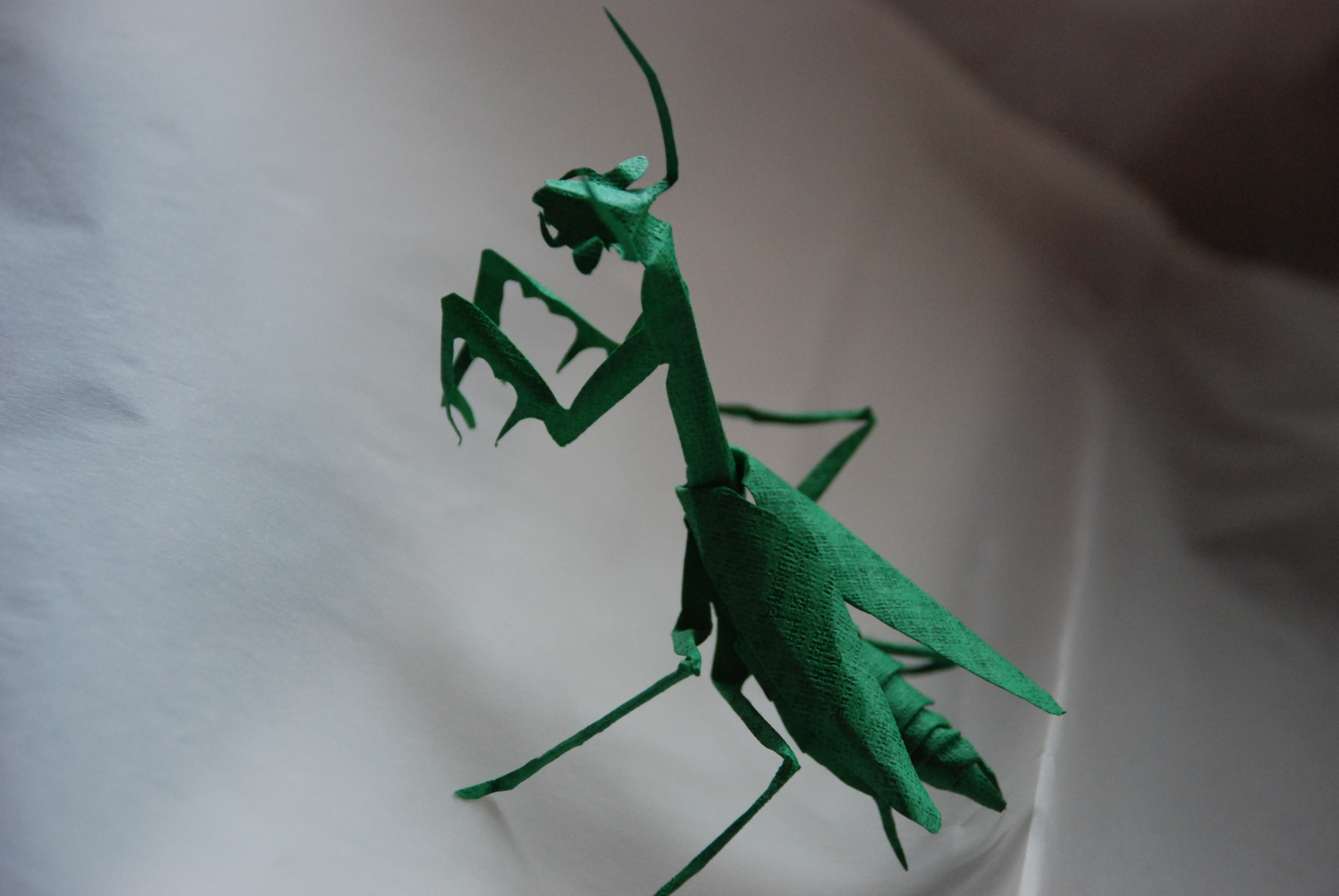 すべての折り紙 折り紙 テレビ : 気分のカマキリ:昆虫立体きり ...