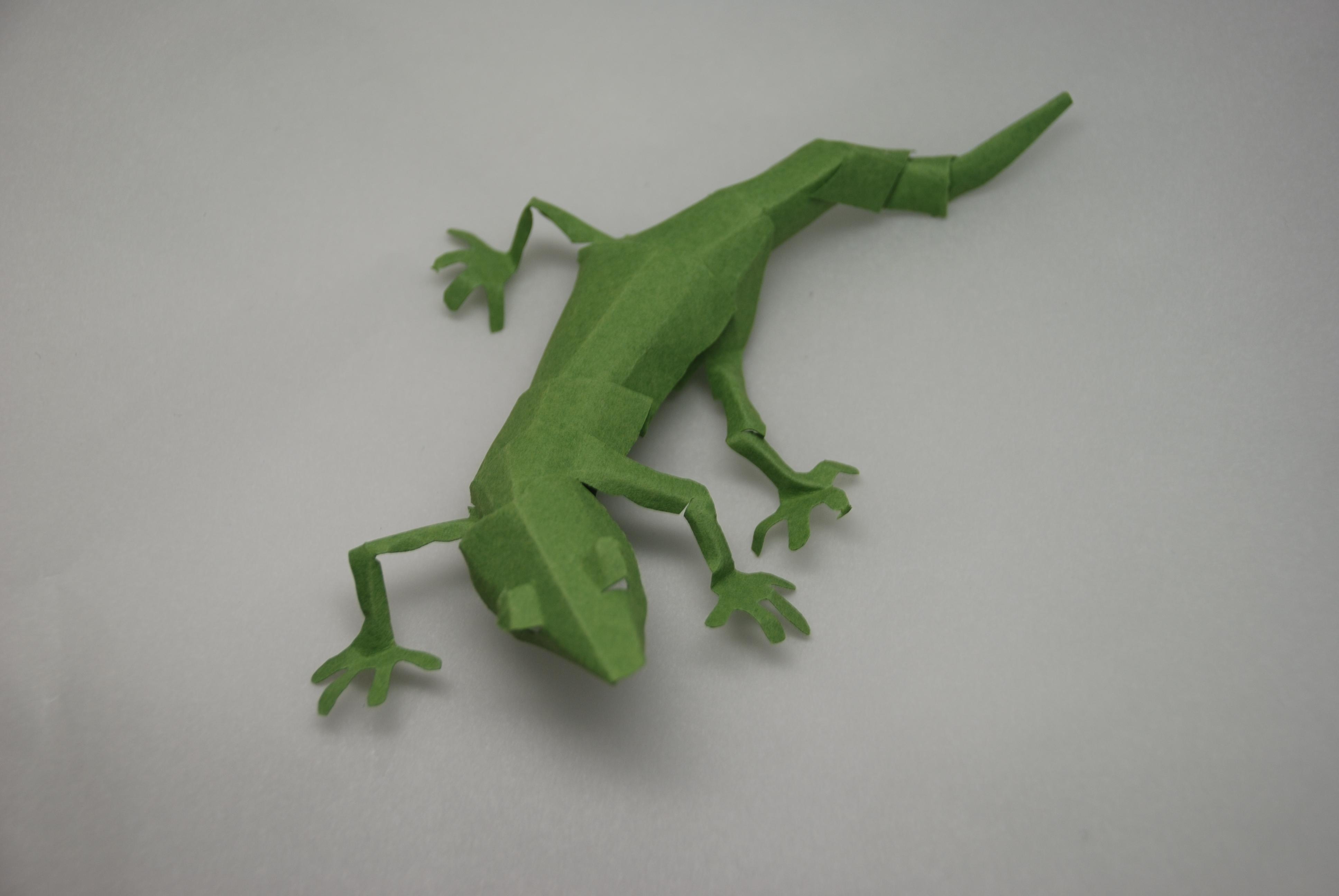 すべての折り紙 折り紙 立体 星 : 切り折り紙:昆虫立体きりおり ...
