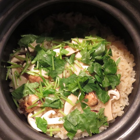 松茸土鍋炊き(紋屋)2808