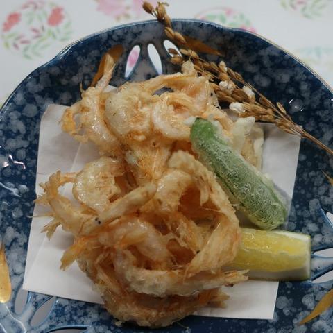 魚津産白海老摘み揚げ(天乃川)1800