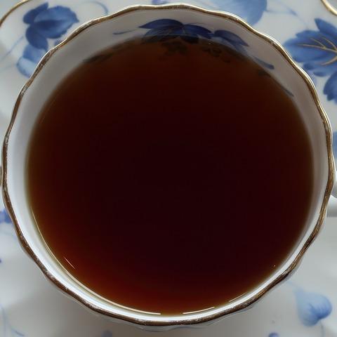 ダブルコンソメスープ(フクシマ)