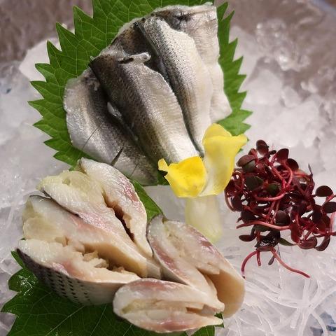 小肌と新子の酢〆(天乃川)1200