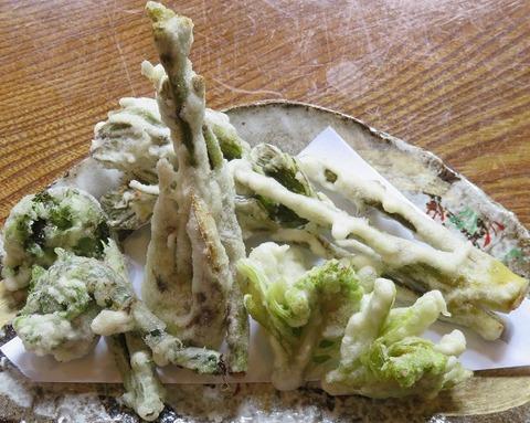 山菜の天ぷら(兜家)