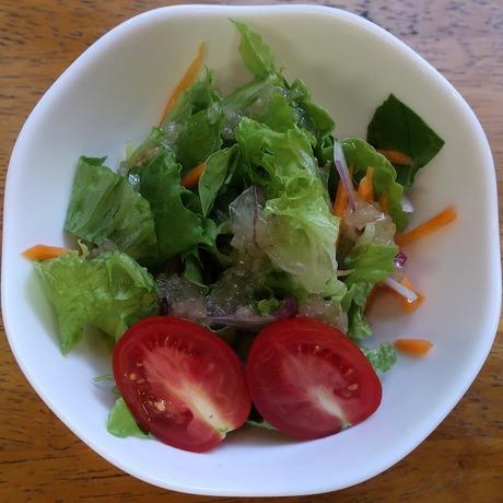サラダ(鉢の木)
