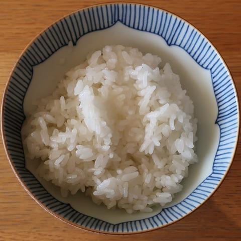 御飯(和田倉)