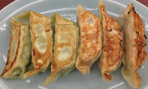 ハーフ&ハーフ餃子(満北亭)500