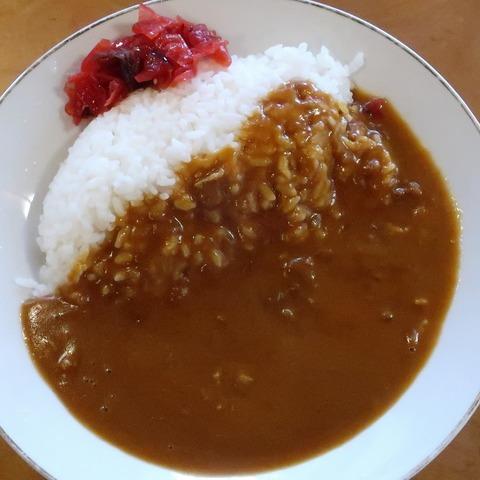 カレーライス(徳寿)750