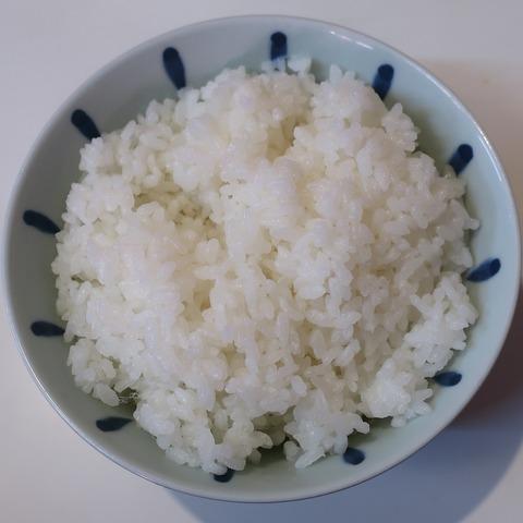 御飯(稲穂)
