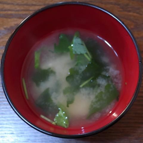 味噌汁(サボテン)