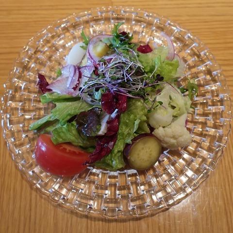 野菜サラダ(オリガミ)