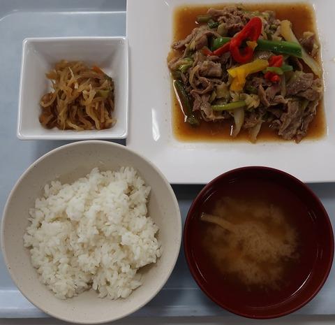 豚肉のスタミナ炒め定食(梨の木)500