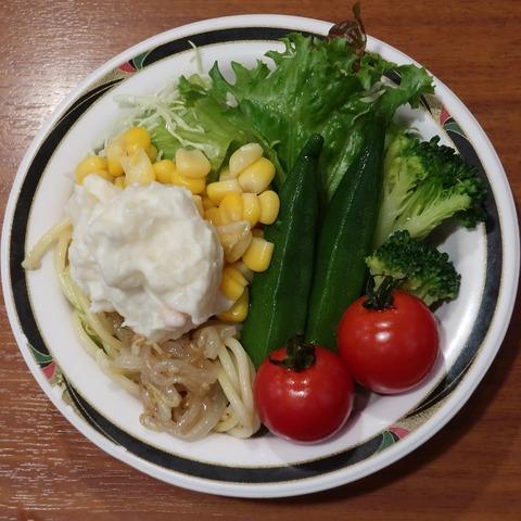 サラダ(けん)