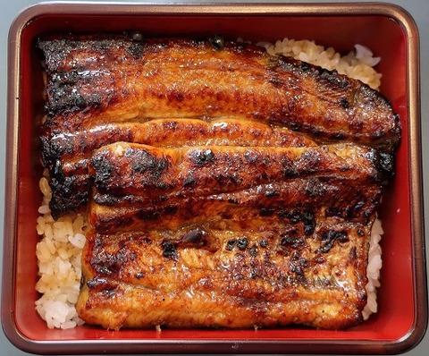 鰻重竹(若菜館)3670