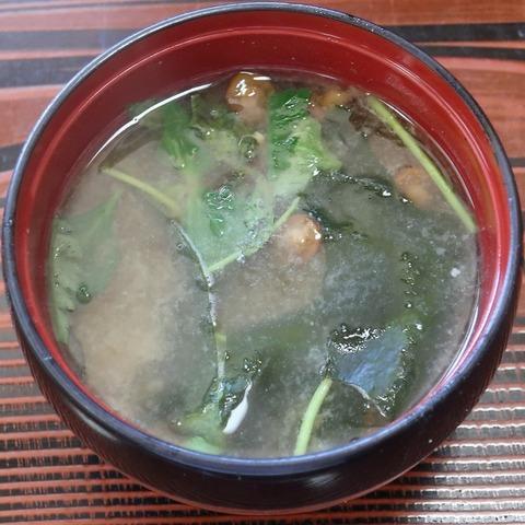 味噌汁(長寿庵・自)