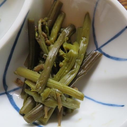 山菜⑥(兜家)