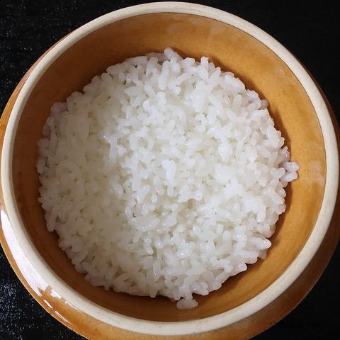御飯(丸井亭)