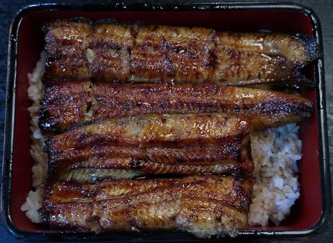 鰻重松(うな正)3500