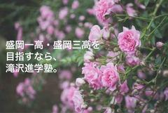 IMG_1153