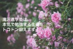 IMG_1187