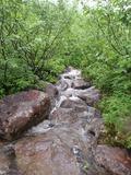 滝と化した道