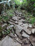 山頂への急登