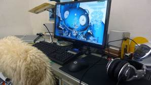 P1060075-desktop100324