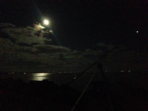 夜釣り風景 5