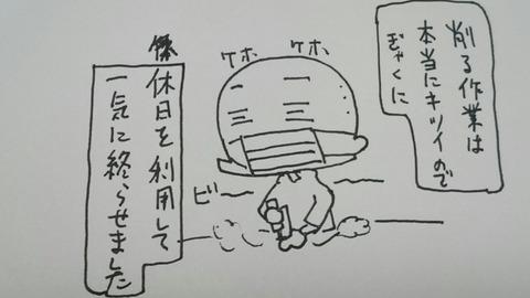 DSC_0704
