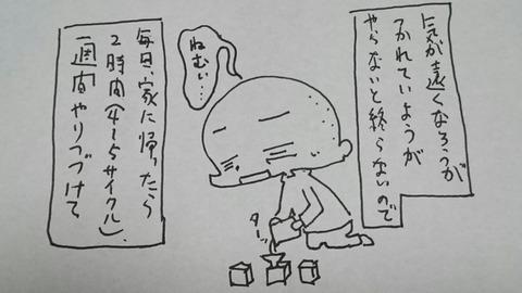 DSC_0702
