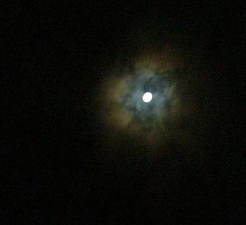 今宵の月夜
