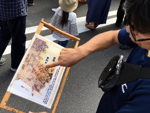 きよせ市民祭