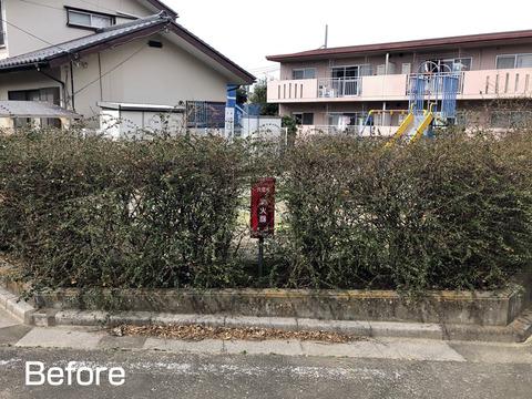 消火栓の回りの垣根を剪定