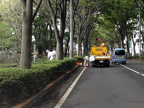 台風後の道路清掃