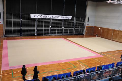 新体操のまち・きよせ公開練習
