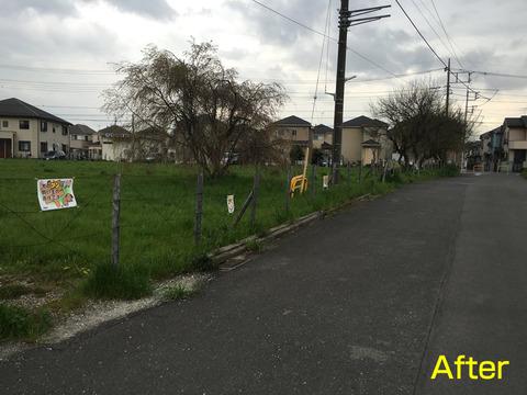 中里団地横の小道