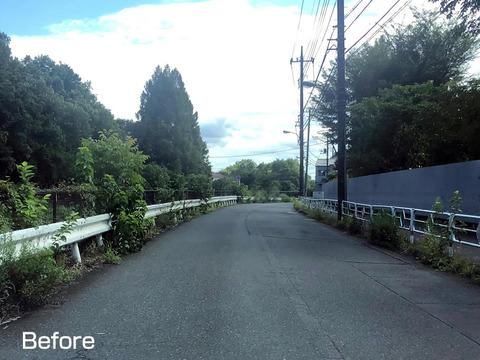 柳瀬川通りの除草
