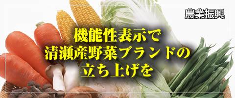 機能性表示で清瀬産野菜ブランドの立ち上げを