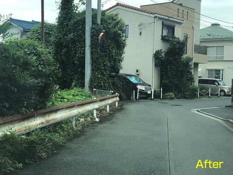 道をふさぐ雑草清掃