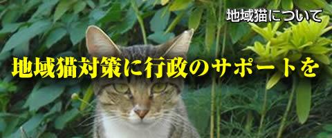 地域猫に行政のサポートを