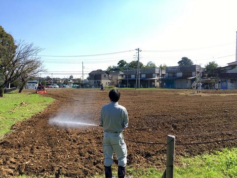 菜の花プロジェクト 10/28
