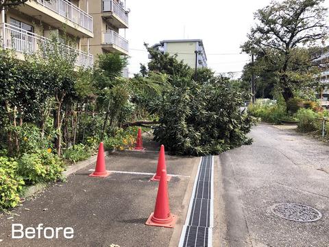 台風24号の傷跡