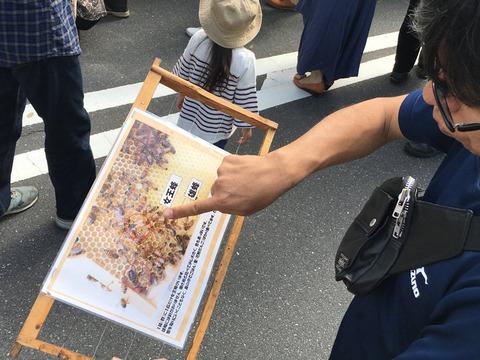 蜂みつ事業について説明する田村総務課長