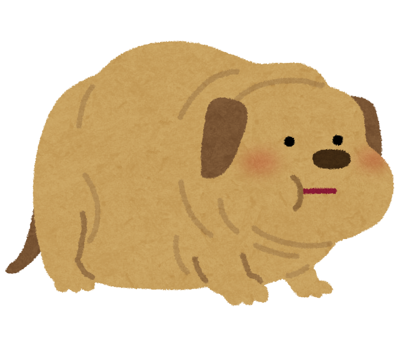 【ブサカワ】「世界で最も醜い犬コンテスト」3歳の(ナポリタン・マスティフ)犬が優勝