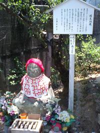 善楽寺の桜見地蔵