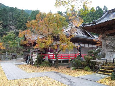 秋の岩本寺