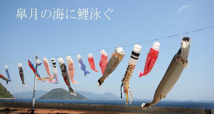 新潟・横浜 018