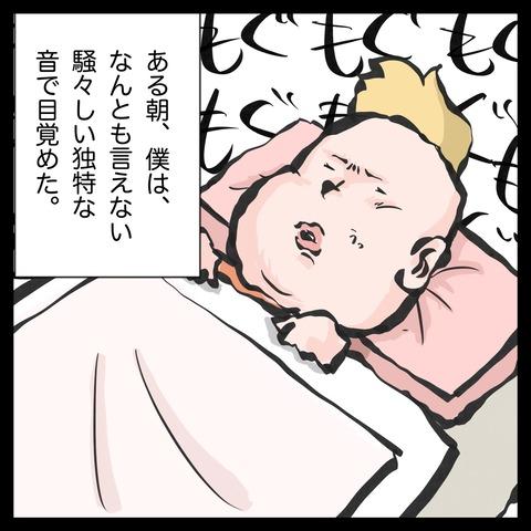 IMG_8146